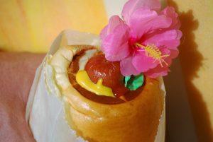 Hot Dog Franchise Food Truck